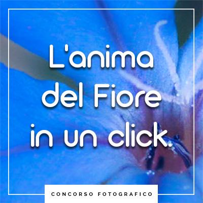 concorso fotografico unione di floriterapia