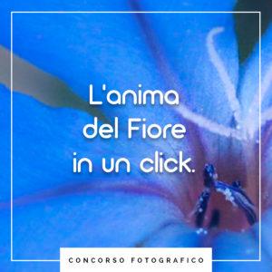 primo concorso fotografico Unione di Floriterapia